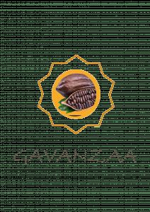 Gavanzza